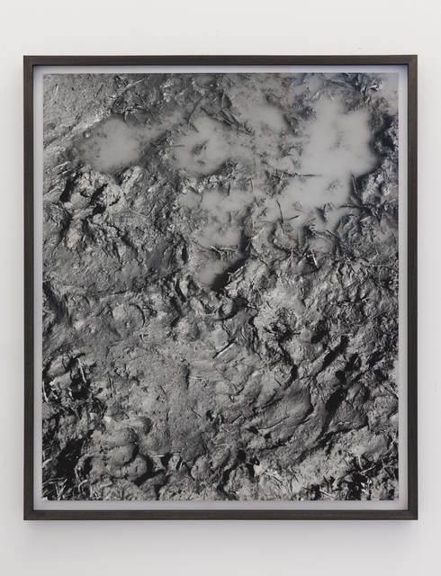 , 'Mud,' 2011, kaufmann repetto