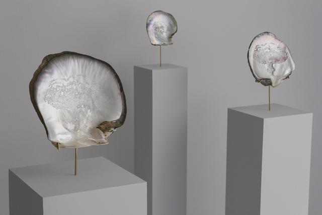 , 'Les Oracles,' 2012-2013, 22,48m2
