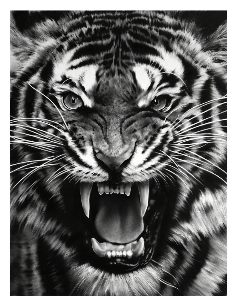 robert longo | untitled (roaring tiger) (2015) | available for sale