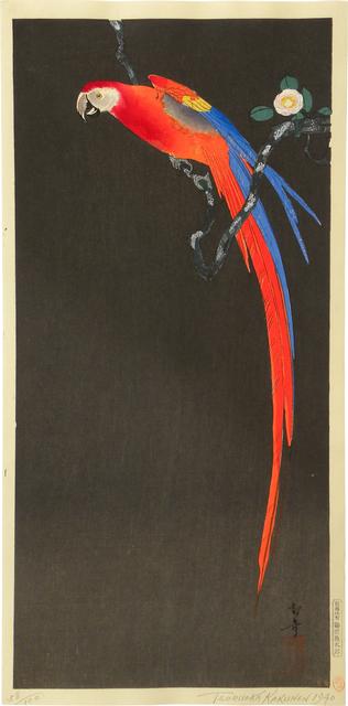 , 'Parrot on a Camellia Branch,' ca. 1940, Scholten Japanese Art