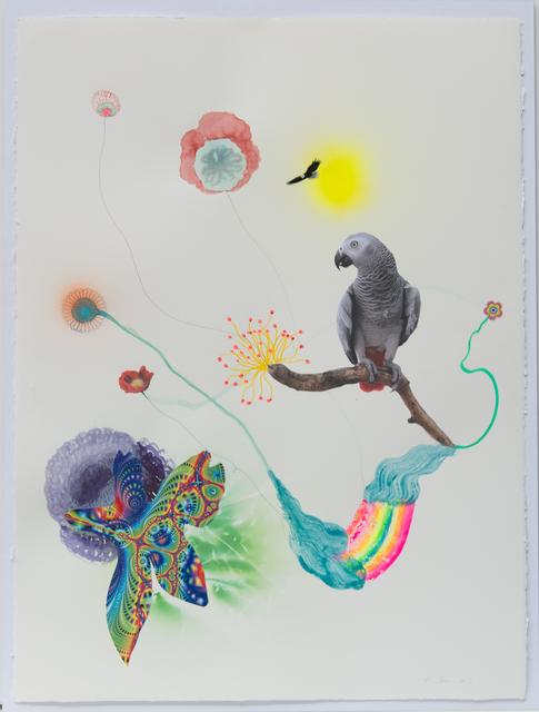 , 'Corso XXXXVII Riverbird,' 2016, Lange + Pult