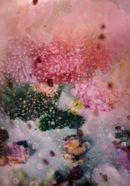 , 'Petites Natures #25,' 2015, Muriel Guépin Gallery