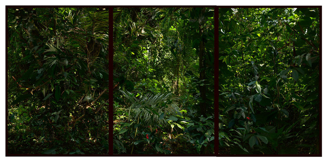 , 'Da série Cristalização da Paisagem, Rio de Janeiro, julho de 2013 [From the series Landscape Crystallization, Rio de Janeiro, July 2013],' 2013, Casa Triângulo