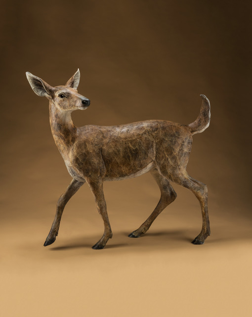 , 'Key Deer,' , Sorrel Sky Gallery