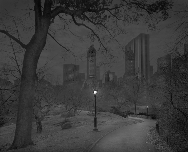 , 'Late Fall - Deep In A Dream - Central Park,' 2013, Holden Luntz Gallery