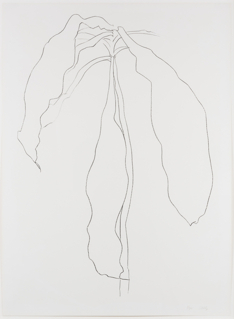Ellsworth Kelly, 'Dracena II, from Series of Plant and Flower Lithographs', 1983-1985, Leslie Sacks Gallery