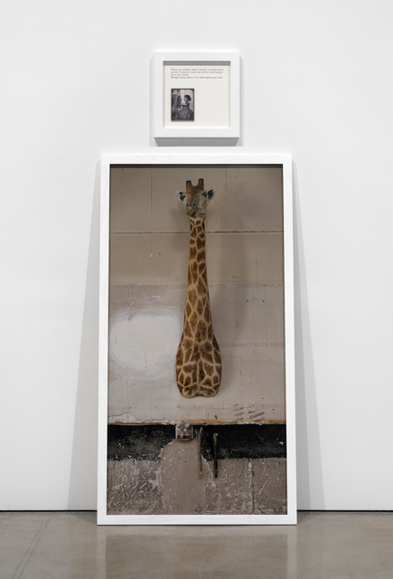 , 'Autobiographies (The Giraffe),' 2012, Paula Cooper Gallery