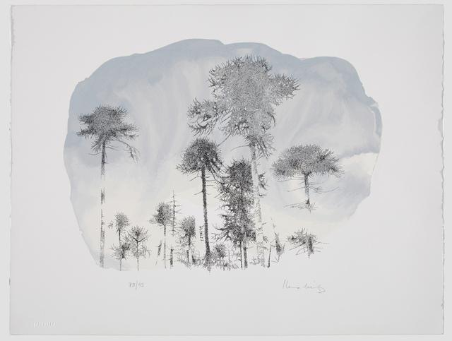 , 'Bosque de araucarias,' 2015, Praxis Prints