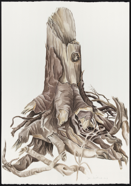 , 'ROOT I,' 2014, Traver Gallery