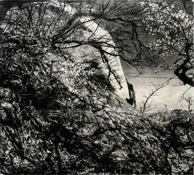 , 'Hidden Tracks 《隐迹》 ,' 2017-2018, Three Shadows +3 Gallery