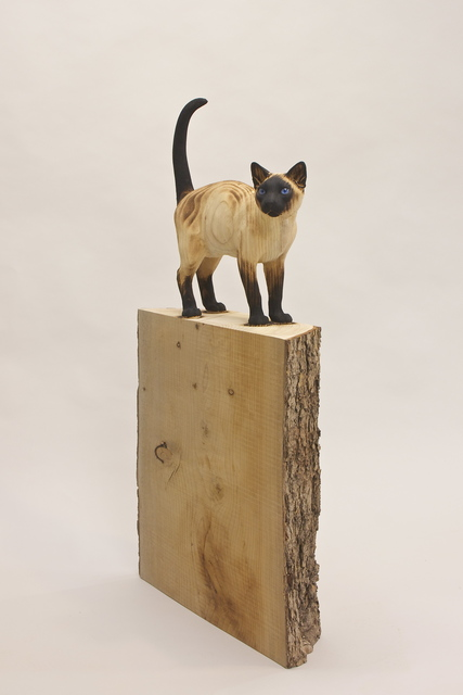 , 'Schrödinger's cat,' 2016, 3 Punts Galeria
