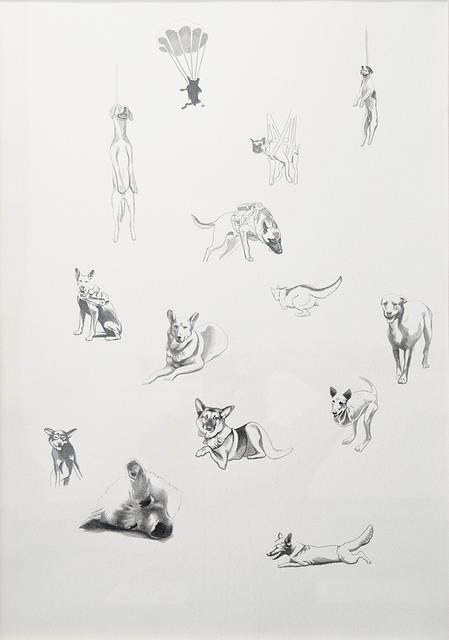 Claudia Martínez Garay, 'Cielo de Perritos / Doggie's Heaven ', 2013, Ginsberg Galería