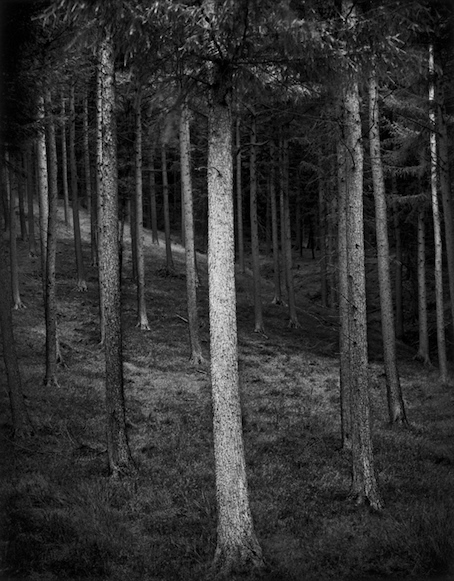 Paul Hart, 'Paragon', 2006, The Photographers' Gallery | Print Sales