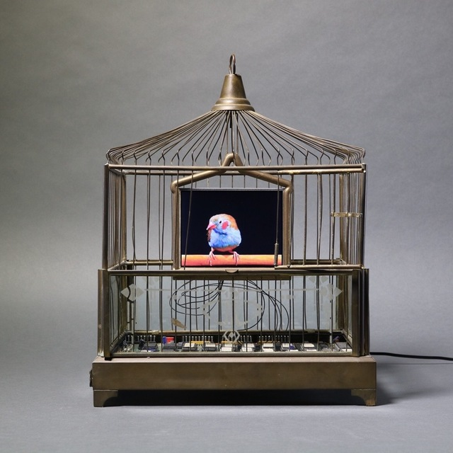 , 'Delight ,' 2016, Bernice Steinbaum Gallery