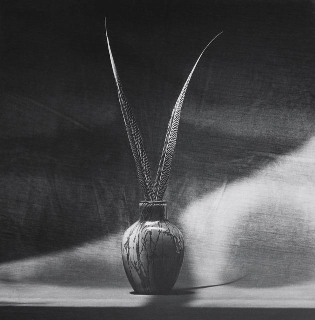 , 'Feathers,' 1985, Mai 36 Galerie