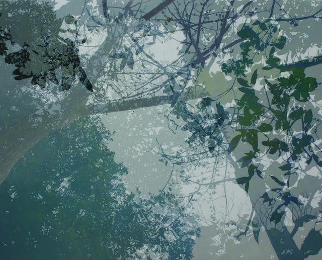 Cheng-Yen LIN, '映像・印象-12 Reflection・Impression-12', 2016, Der-Horng Art Gallery