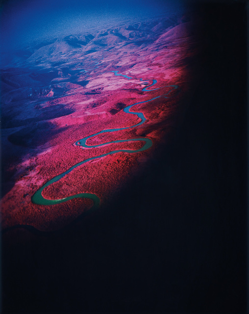 Richard Mosse, 'Another Green World (Infra series)', 2010, Phillips