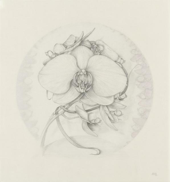 , 'Phalaenopsis VI,' 2015, Lucia Mendoza