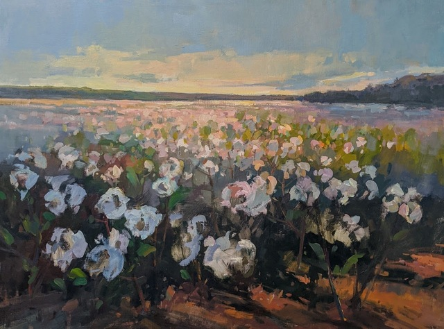 Millie Gosch, 'Morning Harvest', 2020, Painting, Oil on canvas, Anne Neilson Fine Art