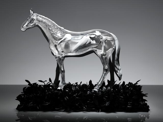 , 'HORSE,' 2015, Ricardo Reyes