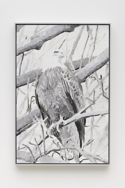 , 'Elegy (Eagle),' 2019, Night Gallery