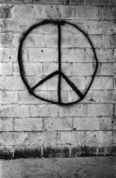 New York, 1962 (Brick Wall)