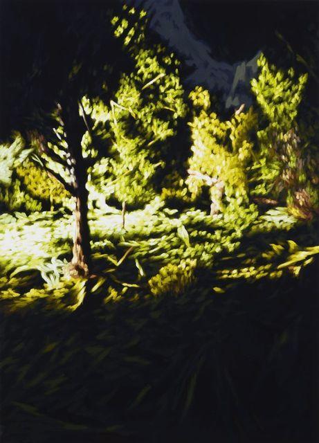 , 'Untitled 161P,' 2012, Galería Juana de Aizpuru