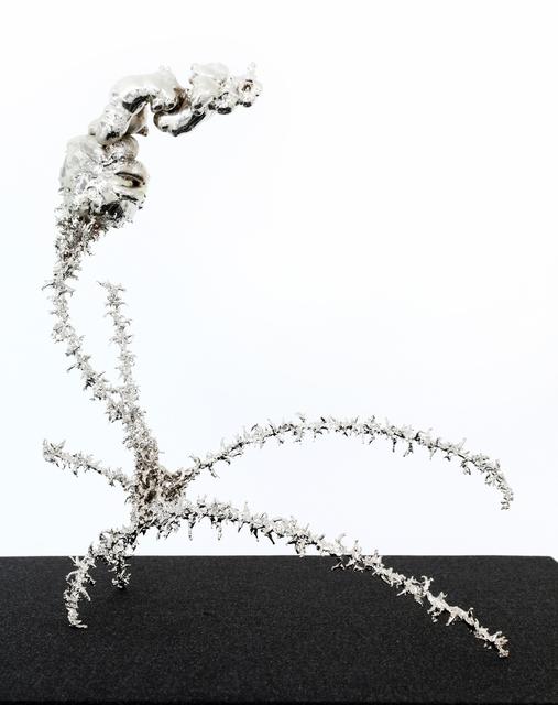 , 'Object 198,' 2016, Anna Nova Gallery