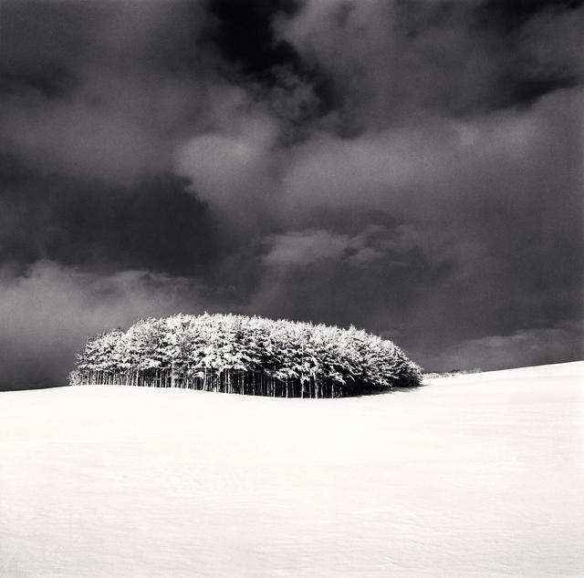 , 'White Copse, Study 2, Wakkanai, Hokkaido, Japan,' 2004, Patricia Conde Galería