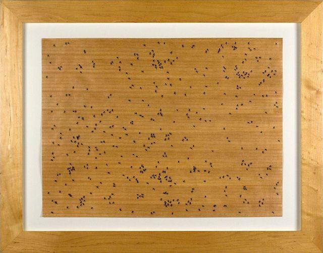Ed Ruscha, 'Black Ants', 1972, Print, Screenprint on paper backed wood veneer, bG Gallery