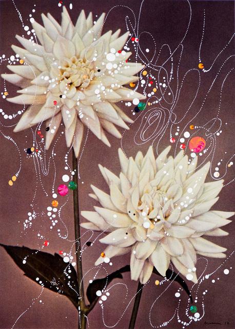, 'Semi Cactus Dahlia Willy Flaton,' 2017, Edwynn Houk Gallery