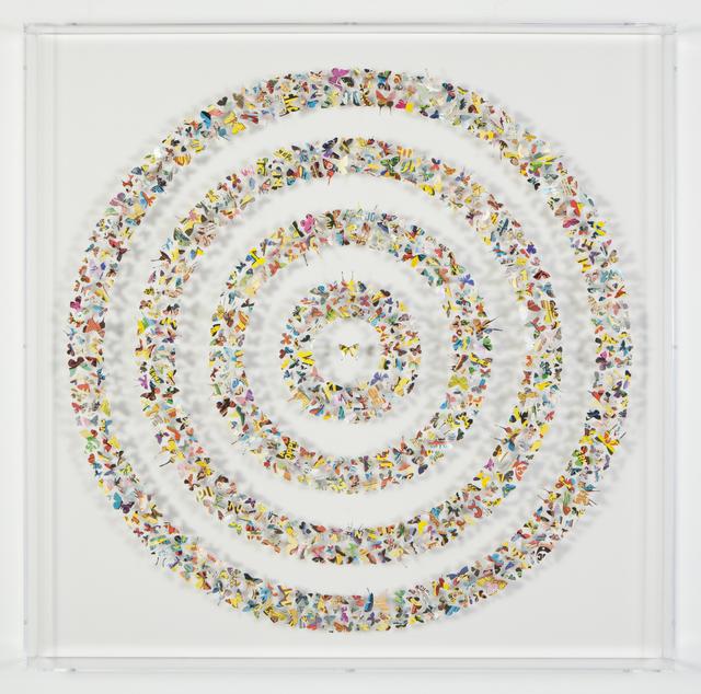 , 'I Feel Very Safe,' 2019, Samuel Owen Gallery
