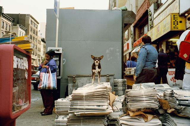 , 'New York City 1993,' 1993, Galerie Bene Taschen
