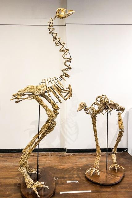 Christy Rupp, 'Two Moas', 2008, Cross Contemporary Art