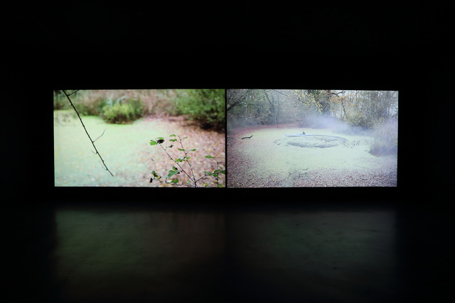 , 'Sudden 一顿,' 2011, Shanghai Gallery of Art