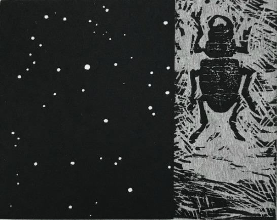 Vija Celmins, 'Night Sky / Beetle', 1990, Print, Woodcut and linoleum cut on Somerset paper, Caviar20
