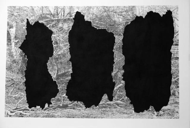 , 'Ménades Noires,' 2016, MLF | MARIE-LAURE FLEISCH