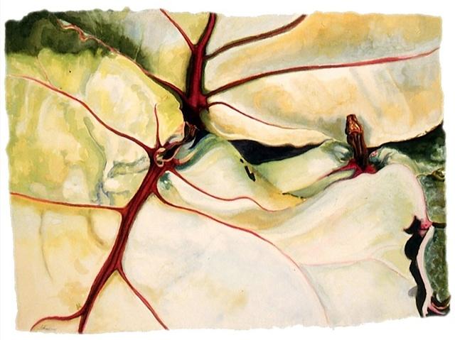 , 'Leaves #17,' 2004, Garvey | Simon