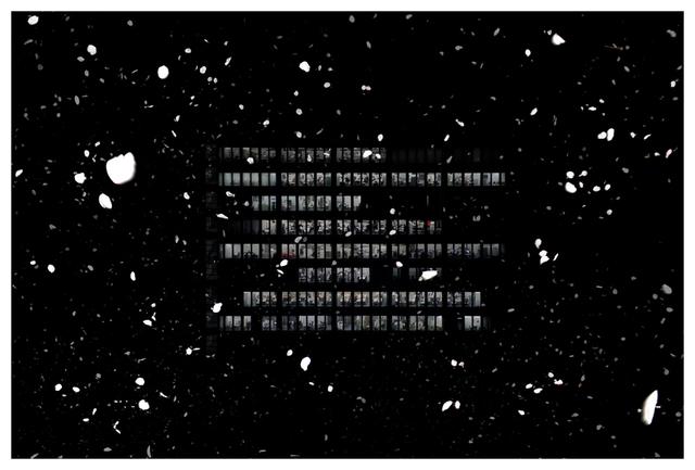 , 'Hanami: Blow II,' 2013, CONRADS