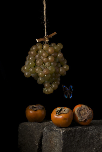 , 'Persimmons, After A.C.,' 2009, Snite Museum of Art