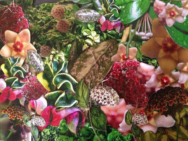 , 'Carnosa,' 2014, Tina Kim Gallery
