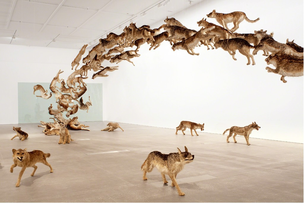 """Head On""