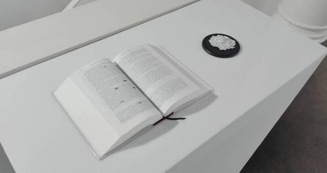 , 'Linderos de un espejismo,' 2017, Ponce + Robles