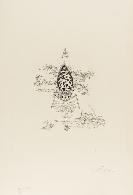 Salvador Dalí, 'Immortalité du Dalianus Galae (M & L 567b; Field 73-20A)', 1975, Forum Auctions