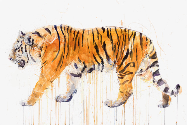Dave White, 'Tiger XXL', 2019, The Drang Gallery