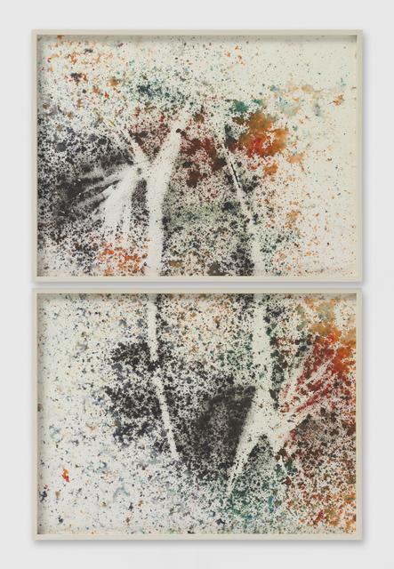 Sam Falls, 'Untitled (Venice, CA, Birds of Paradise drawing 1, diptych)', 2014, Galerie Eva Presenhuber