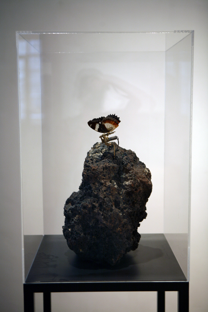 , 'Metamorphoses of the Rock,' 2014, Galería Pelaires
