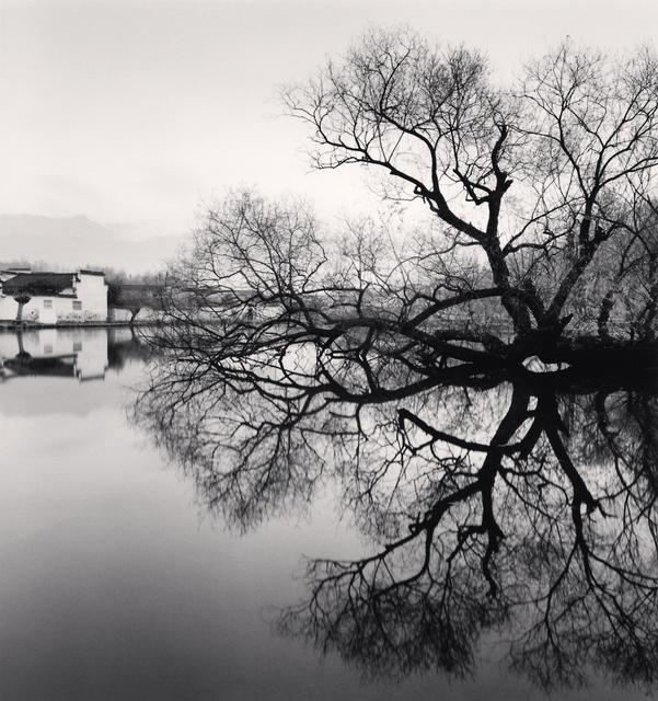 , 'Reflected Tree, Hongkun, Anhui, China.,' 2007, Blue Lotus Gallery