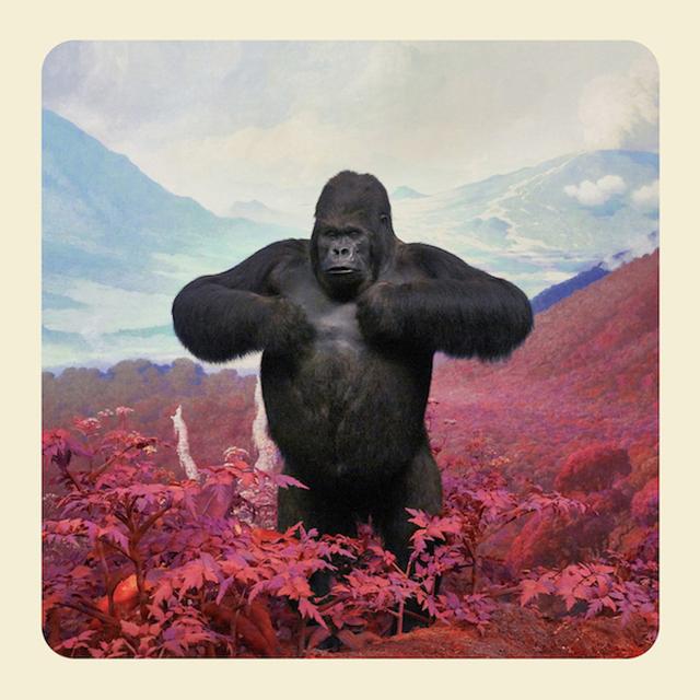 Jim Naughten, 'The King of Kong, 2017', Michael Hoppen Gallery