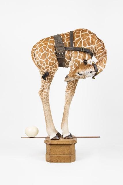 , 'La naissance de l'équilibre,' 2016, Art Partout
